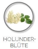 Kokoswasser Geschmack Sorte Holunderblüte