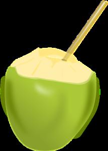 kokoswasser-die-inhaltsstoffe
