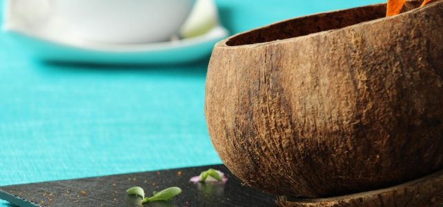 Kokosnussprodukte eine Übersicht